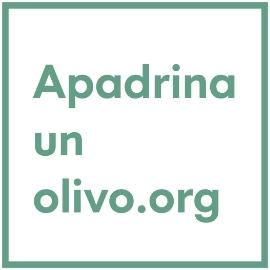 apadrino un olivo