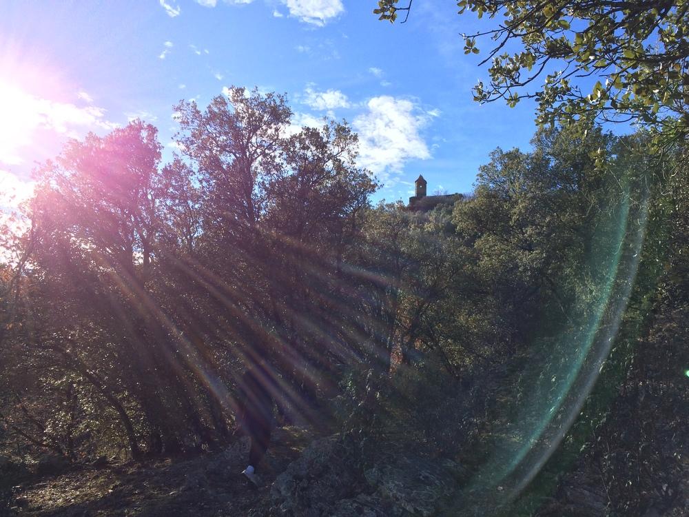 Rural Coliving Safari