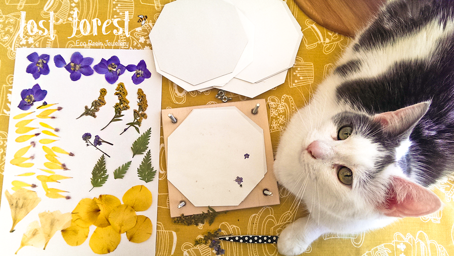 Billie 'helping' me in the studio with some flower pressing.