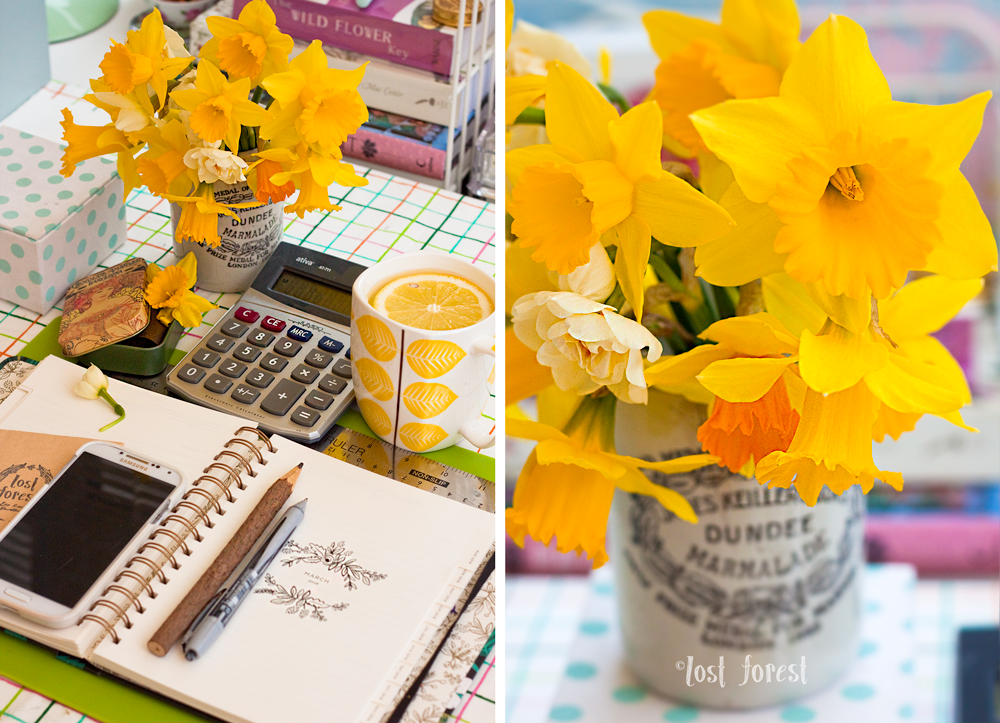 DaffodilDesk.png