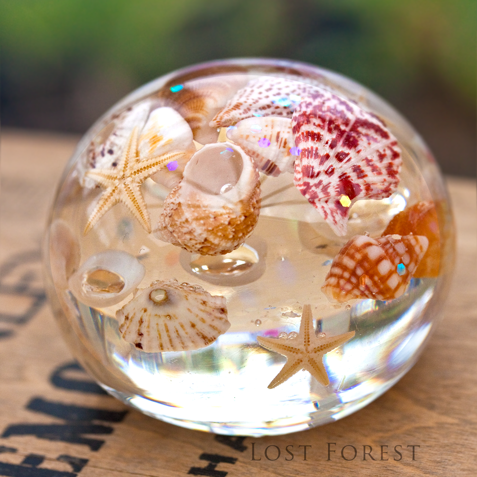 custom paperweight: seashells & starfish from a memorable holiday - I cannot thank you enough for creating a' little world' for us that we can enjoy and reminisce about for many many years to come. The craftsmanship is outstanding! I cannot stop myself from looking at it and discovering new details every time- just wonderful!- Claudia, Germany