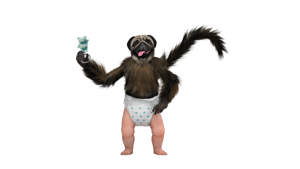 PuppyMonkeyBaby Mountain Dew Licensing