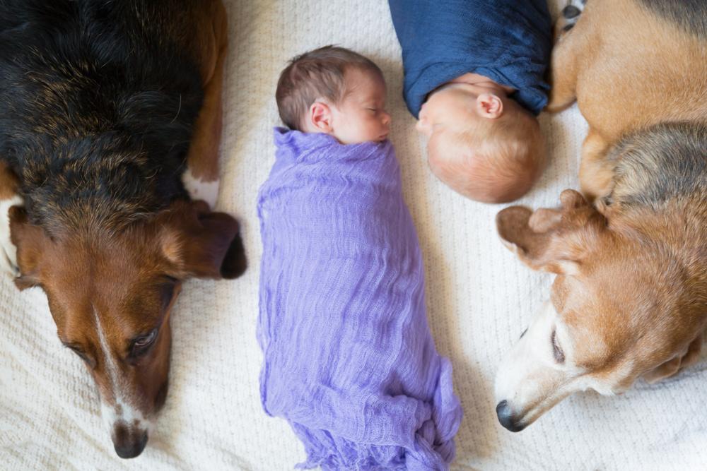 Frisco Newborn Twins-28.jpg
