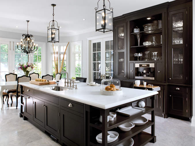 Dark and Elegant Kitchen