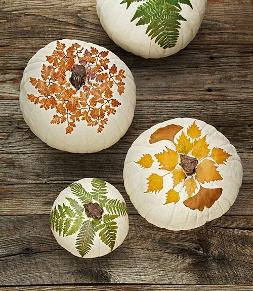 Decoupage Pumpkins, Courtesy Studio D