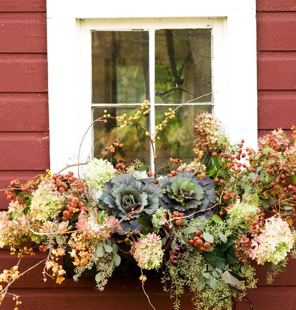 Fall Window Box, Courtesy Decor Amore