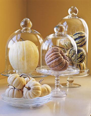 Gourds Under Glass, Courtesy Matthew Benson