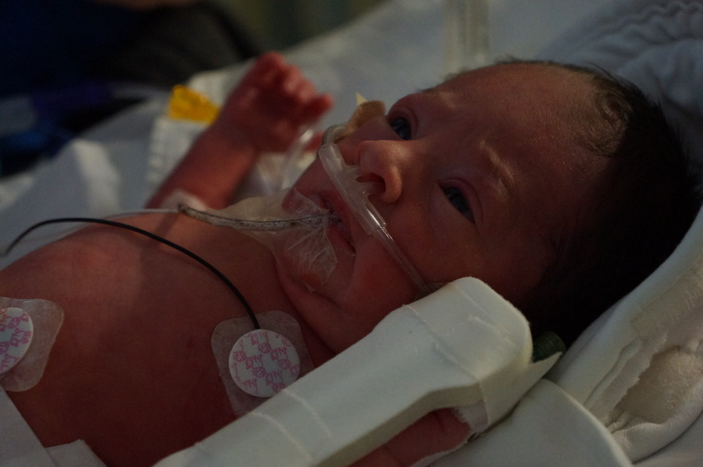 Meet baby Beau!