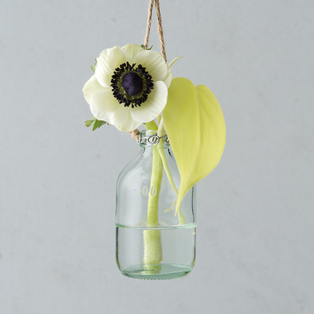 Terrain Hanging Bud Vase