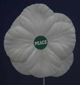 567px-White_peace_poppy.jpg