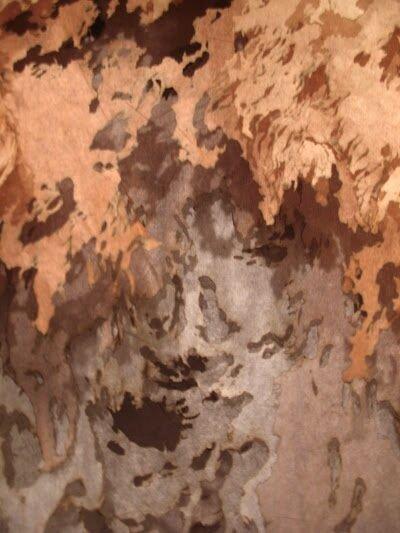 bruneddet8.jpg
