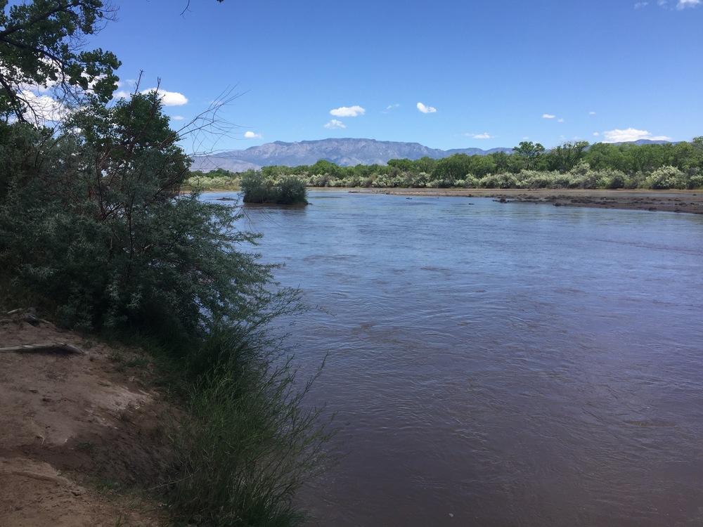 Rio Grande, Albuquerque