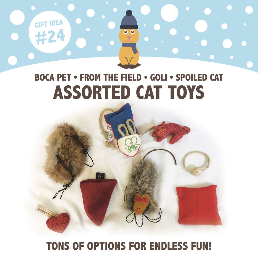 24-bulk-cat-toys.jpg