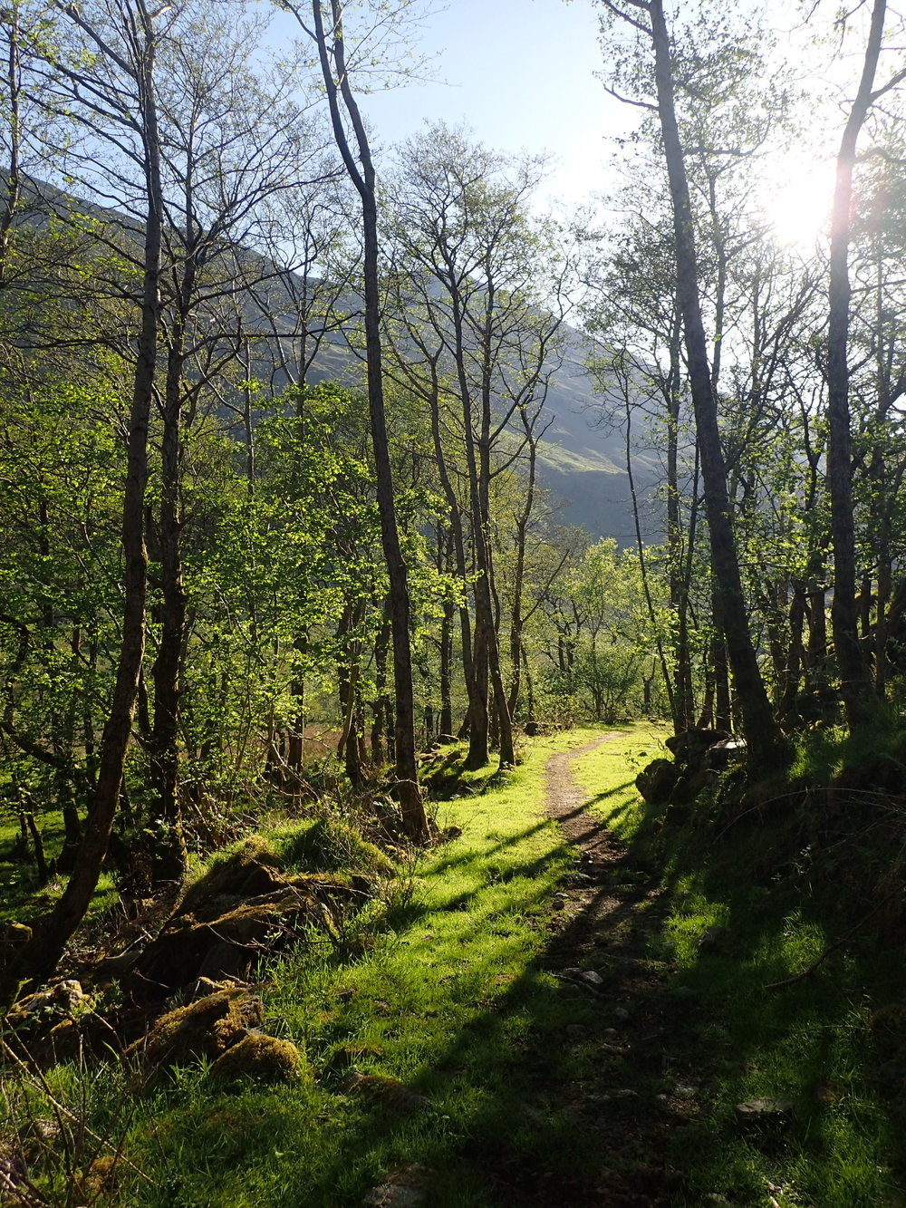 Five Sister and The Brothers of Kintail - May 24, 2018