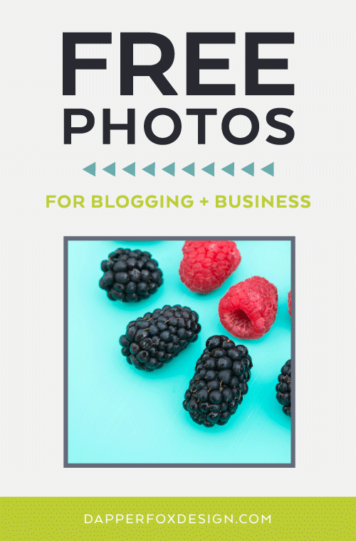 Free Blog Photos and Royalty Free Photos for Website at Dapper Fox Design - Freebie Friday, Berry Bliss. A creative resource for entrepreneurs and bloggers
