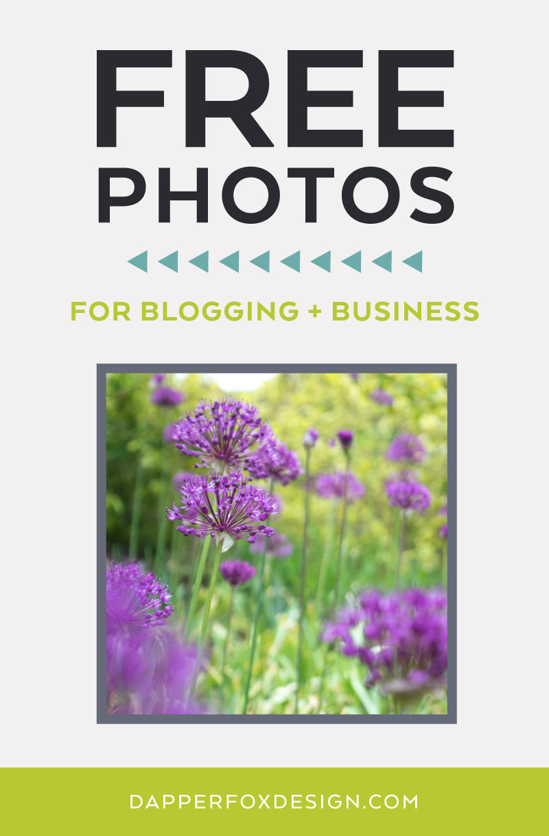 FREEBIE FRIDAY | Free Photos - Spring Wildflowers Photo Pack by Dapper Fox