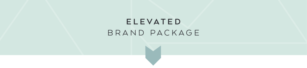 Elevated Branding Package from Dapper Fox offers unique logo design and visual branding.