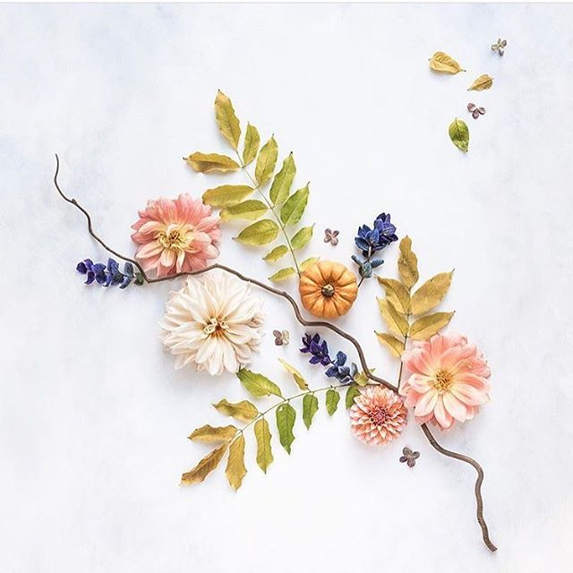 Admiring this gorgeous #foundart by the talented @c_colli 😍Her feed is visually stunning, and so inspiring... ✨ If you don't already, make sure to follow her for all the latest nature-inspired gems 🌿