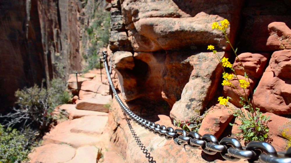 zion national park trail angels landing chains thisworldexists this world exists