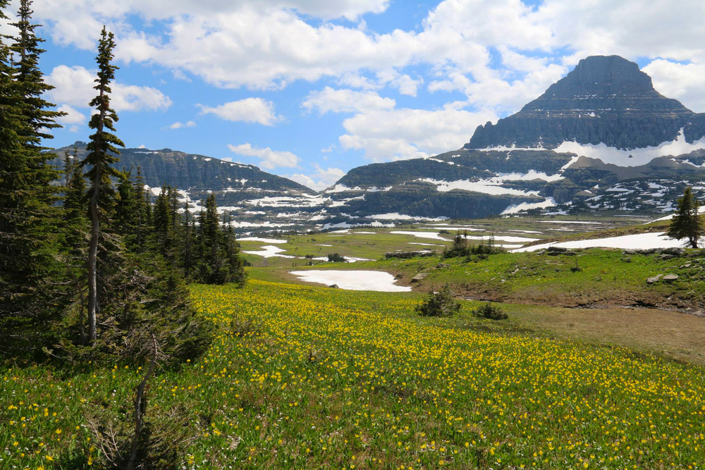 glacier national park montana mountains hike logan pass trails
