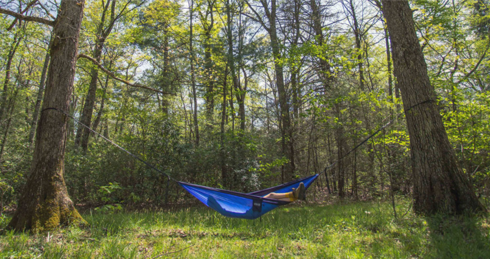 eno hammocks thisworldexists this world exists explore outdoors hammock relax hiking