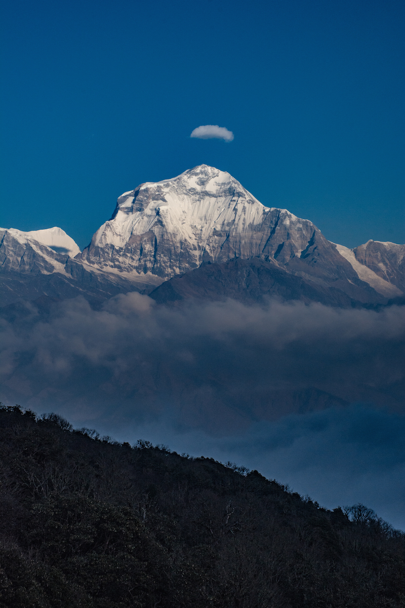 Dhaulagiri thisworldexists this world exists hike nepal hiking mountains himalaya