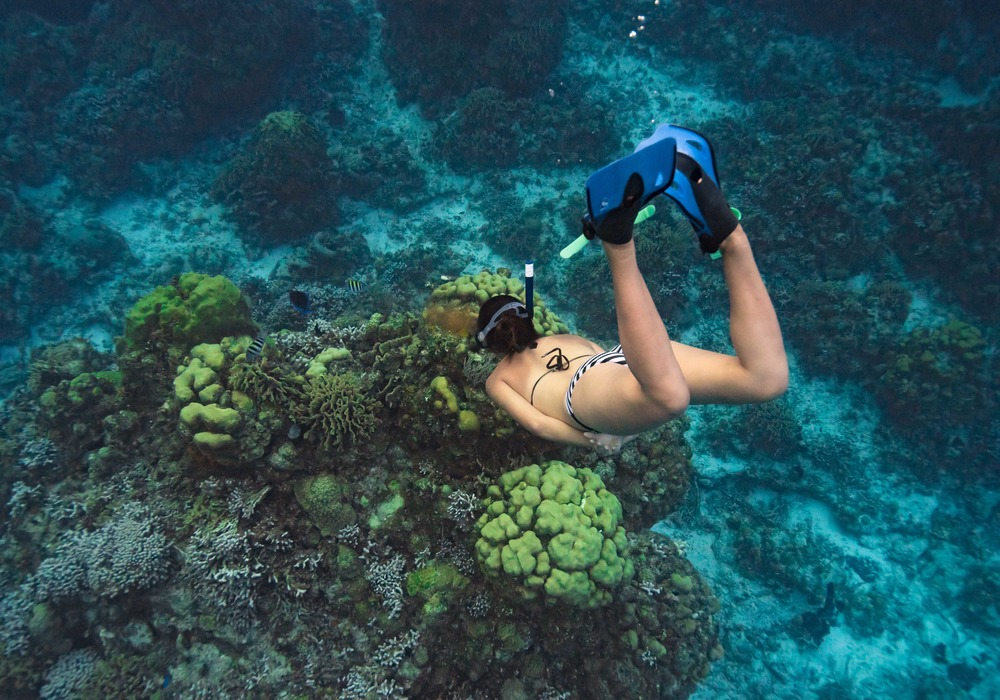 Columbia Reef snorkeling snorkelling Kayaking Cozumel Mexico THISWORLDEXISTS this world exists ryan gray media somos fotocreativos the explorean all inclusive fiesta americana beach holiday caribbean