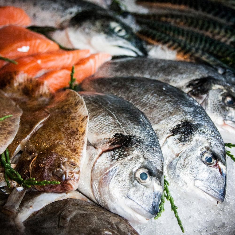 Fresh-Fish.jpg