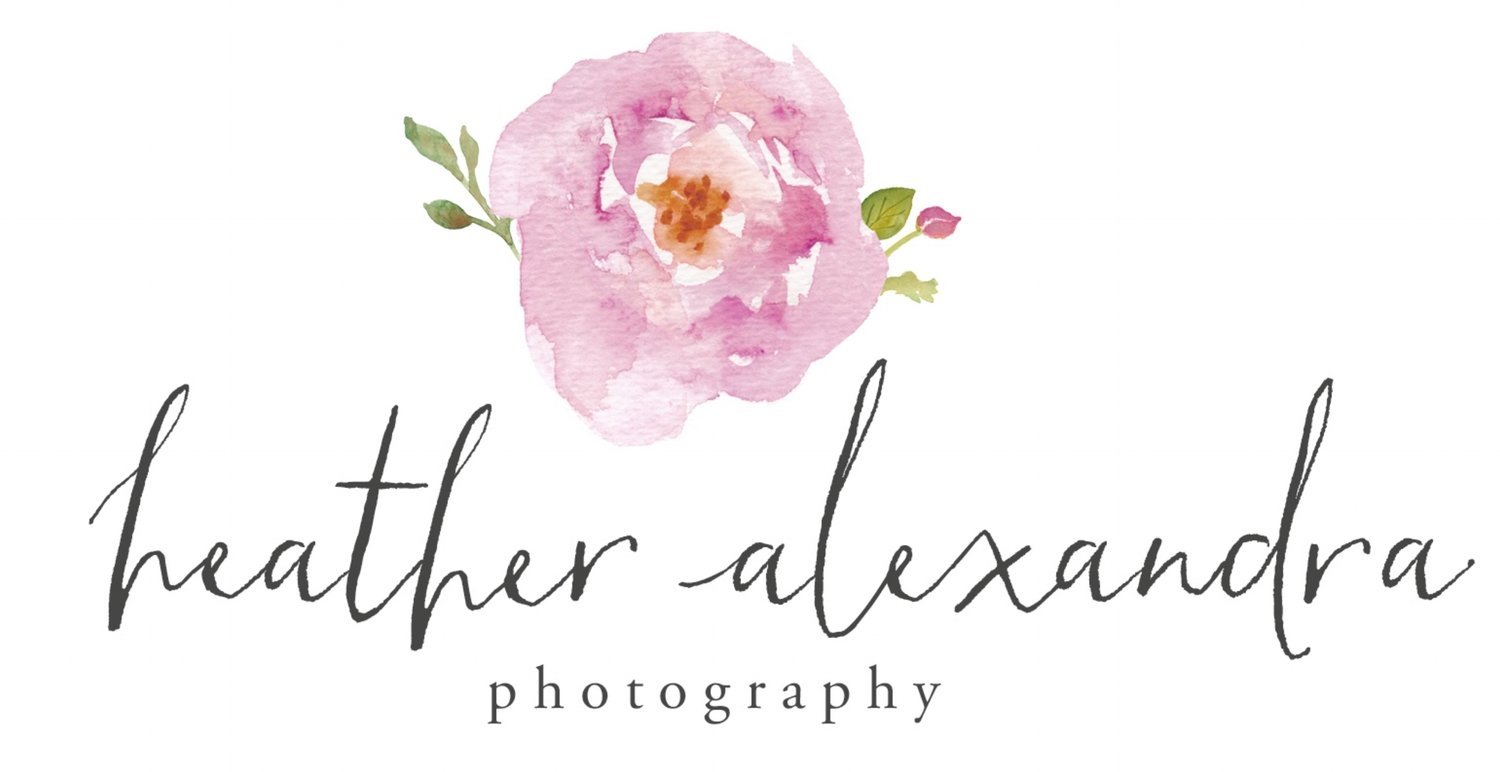 Heather Alexandra Photography