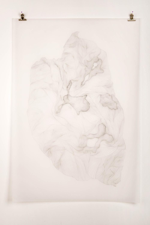 Fold, 2014
