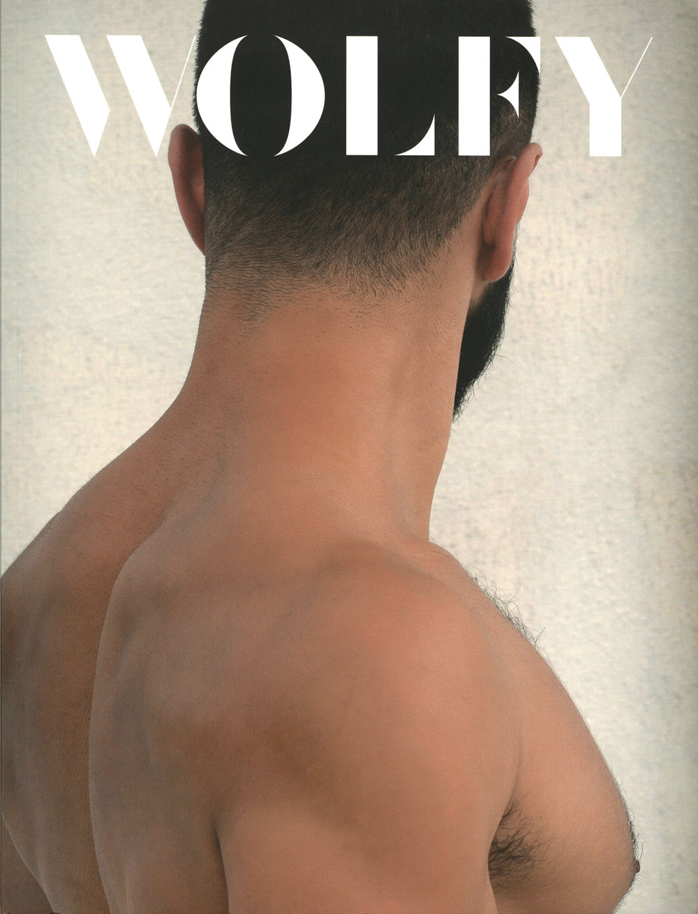 171100-Wolfy003-cover-LoRes.jpg