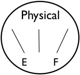 gauge-physical