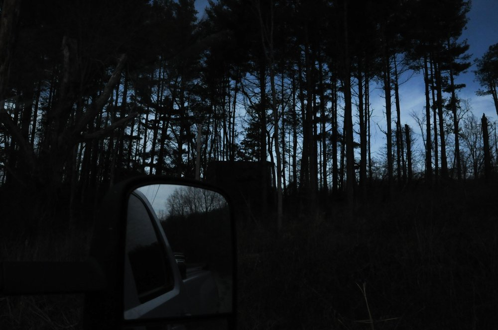 A drive through the rural woods of Carroll County - woods not yet showing signs of the massive chemical invasion happening below and among them.
