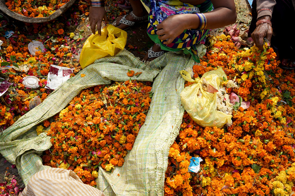 A woman sorts through the non-degradable waste in a flower delivery of marigolds.