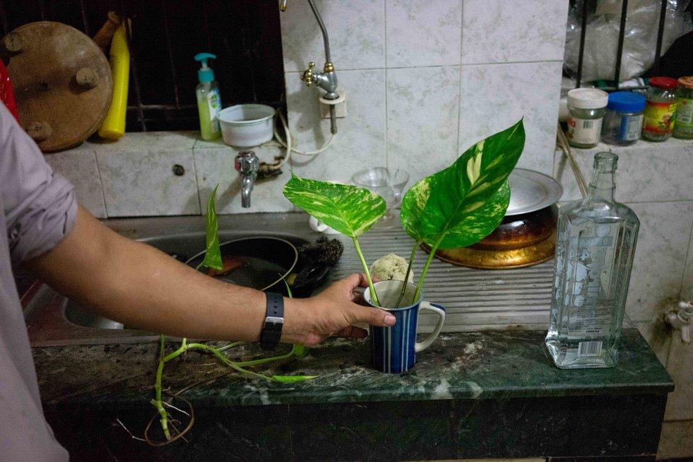 Dhaka Novemeber personal misc-21.jpg