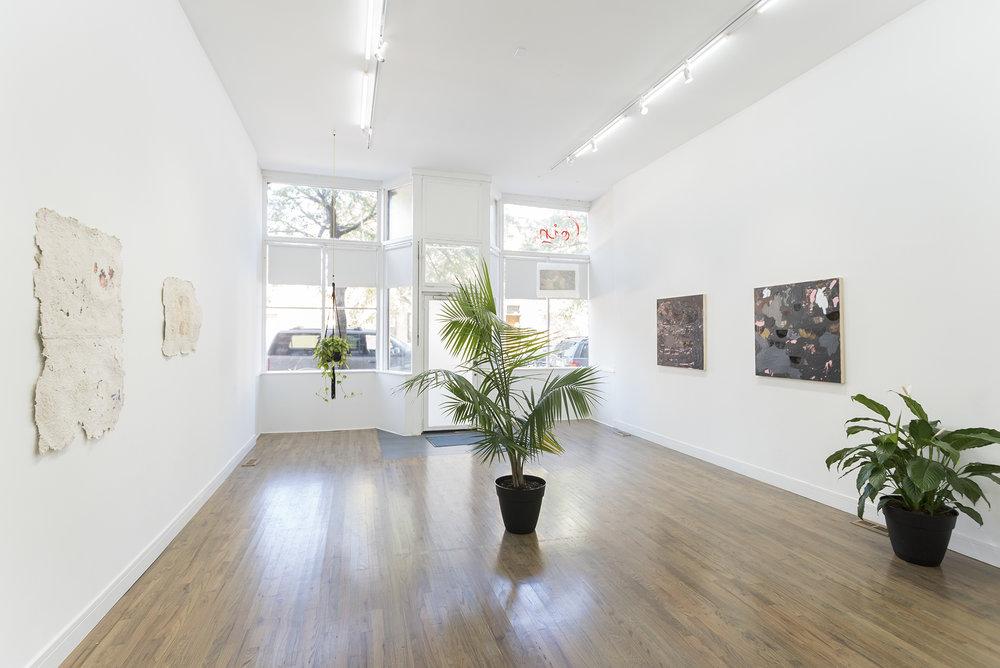 Quiet Storm , (with Krista Franklin), exhibition view, 2017