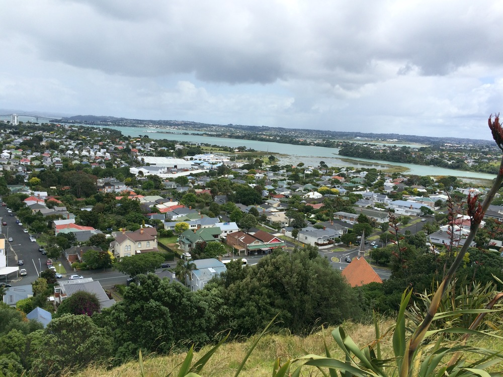 View of Ngataringa Bay from Mt Victoria-Takarunga