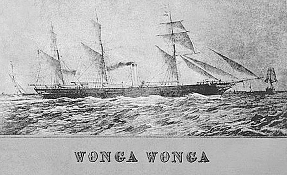 wonga_wonga_clipper_-_Google_Search.png