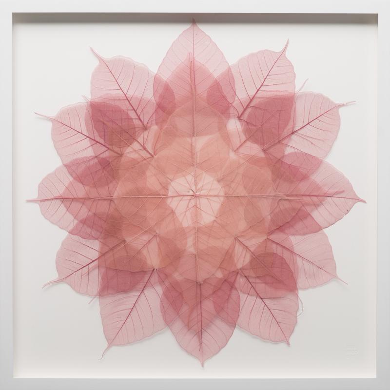 Rose Mini Mandala via Artsy