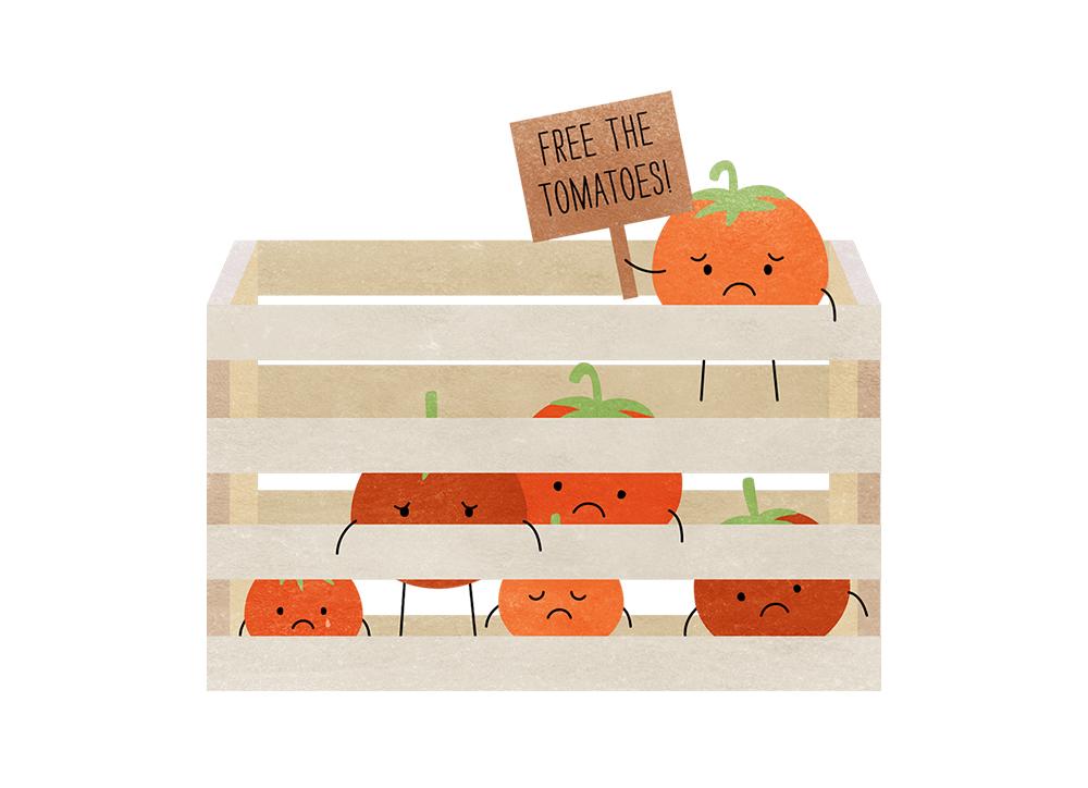 CFP_Tomatoes.jpg