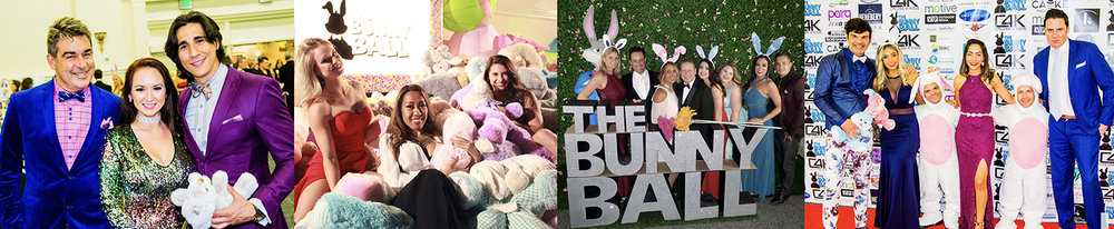 4 bunny ball images banner.jpg