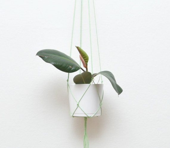 window decoration flower plant holder