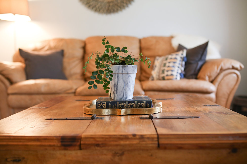 Using plants as home decor accessories