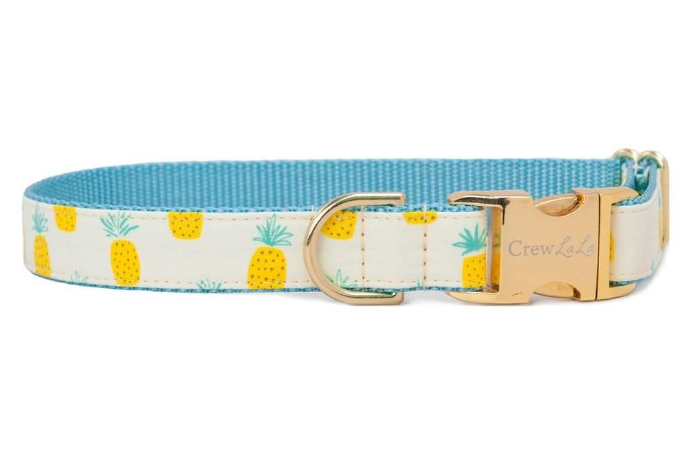 Charleston Gift Ideas - pineapple dog collar