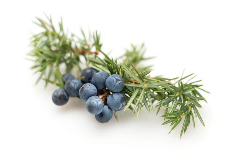 Juniper Berry Essential Oil (USDA certified organic)