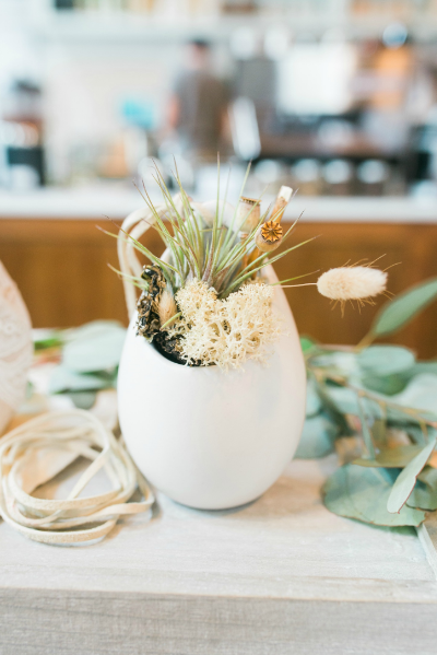 Air Plant Terrarium | The Zen Succulent | Raleigh