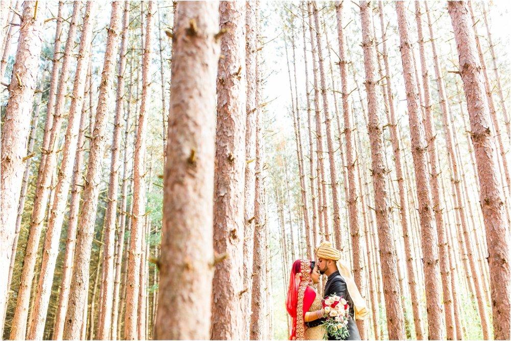 Best-of-2017-Weddings-Toronto-Mississauga-Brampton-Scarborough-GTA-Pakistani-Indian-Wedding-Engagement-Photographer-Photography_0084.jpg