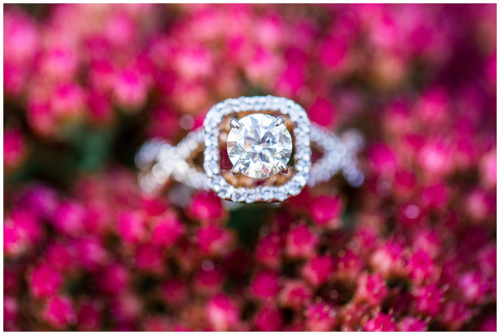 Brueckner-Rhododendron-Gardens-Engagement-Toronto-Mississauga-Brampton-Scarborough-GTA-Indian-Pakistani-Muslim-Wedding-Photographer_0011.jpg