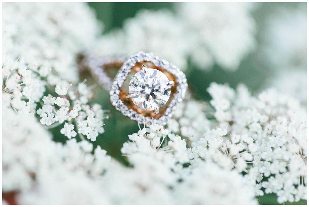 Brueckner-Rhododendron-Gardens-Engagement-Toronto-Mississauga-Brampton-Scarborough-GTA-Indian-Pakistani-Muslim-Wedding-Photographer_0021.jpg