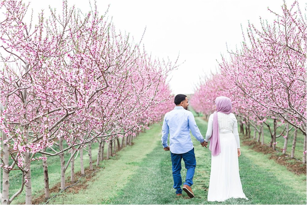 Niagara-on-the-lake-cherry-blossom-farm-Engagement-Session-Toronto-Mississauga-Brampton-Scarborough-GTA-Pakistani-Indian-Wedding-Engagement-Photographer-Photography_0012.jpg